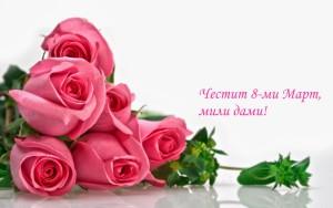 rosas-hermosas-del-jardín-111